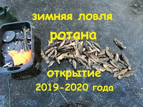 Зимняя ловля ротана жерлицами. Открытие 2019-2020 года.