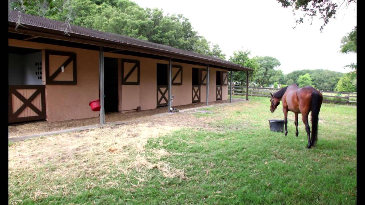 Ocala, Florida Mini Farm for Sale - Horses Allowed