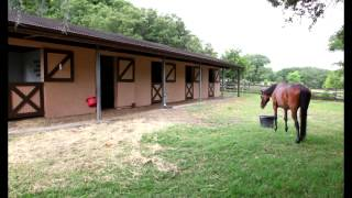 Ocala, Florida Mini Farm  for Sale - Horses Allowed