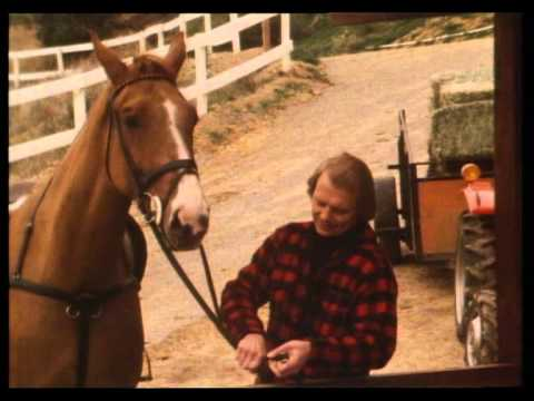 The Best Days of My Life  David Soul