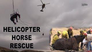 HELICOPTER HORSE RESCUE Nov. 27 2017