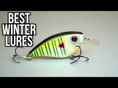 BEST Lures to Catch Bass in the Winter - Bass Fishing Tips