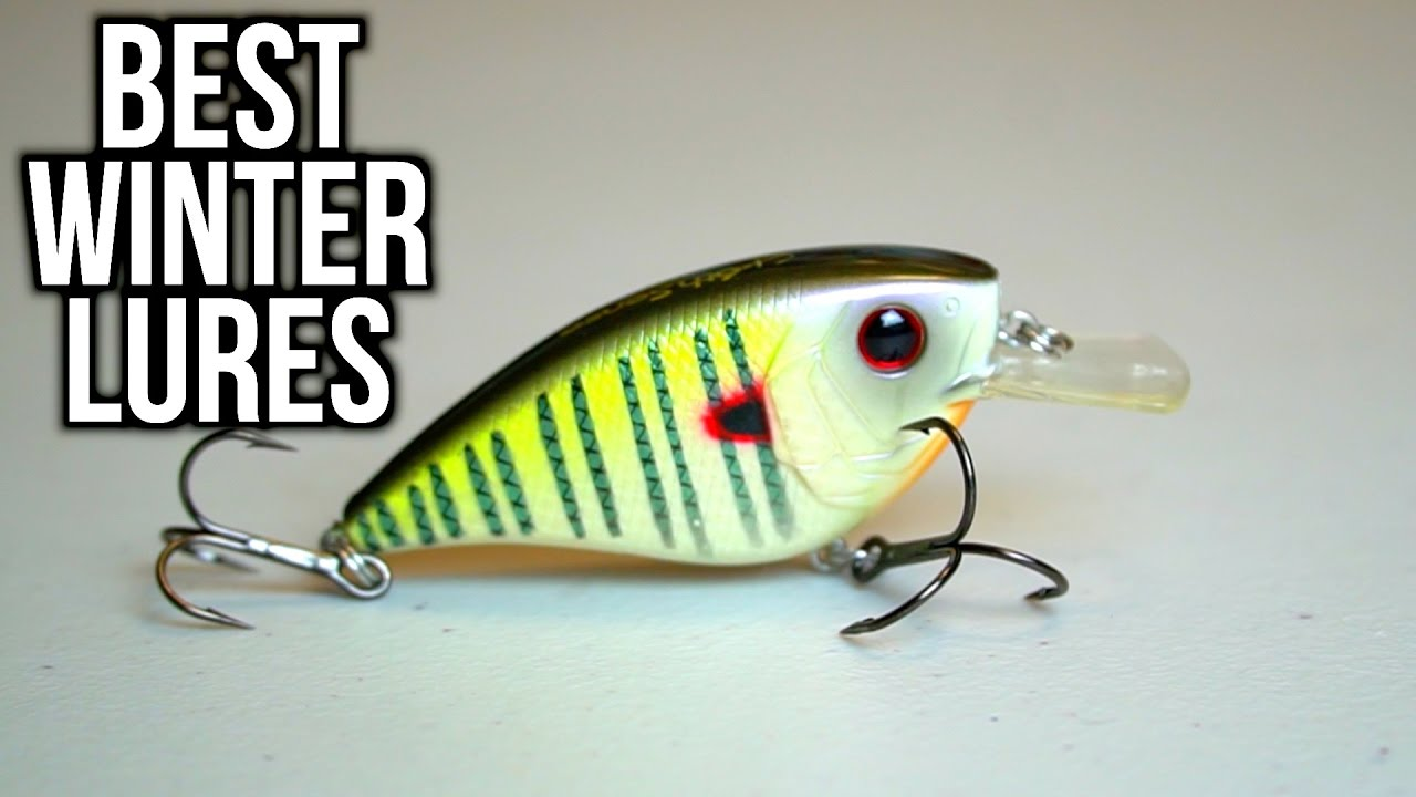 Best Lures To Catch Bass In The Winter Bass Fishing Tips Youtube