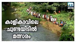 The joy of fishing once again | Mathrubhumi News