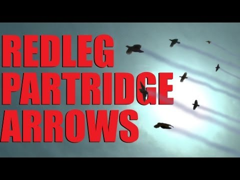 Fieldsports Britain : Supercharged driven partridge  (episode 202)