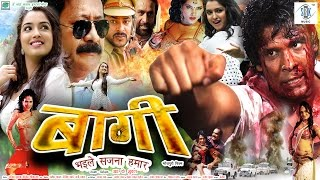 BAAGHI | Superhit Full Bhojpuri Movie | Amrapali Dubey