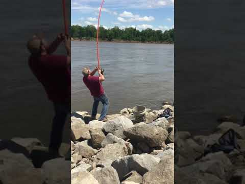 Catfishing From The Bank Arkansas River 17lb Blue Cat Bite In One Minute
