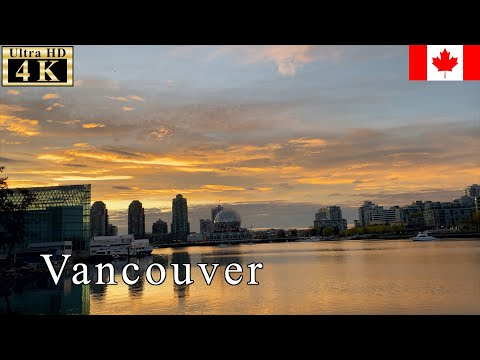 🇨🇦Vancouver Spring Walk - Early Morning -【4K 60fps】