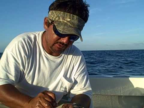 Ruben Peña  doing the double hook bait for an african panpano..