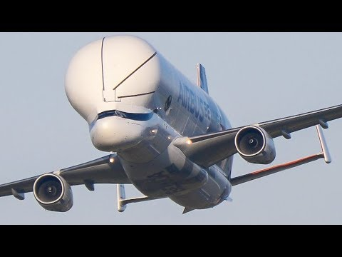 Airbus Beluga XL AEROBATICS DISPLAY  - Fly Past, Wing Wave & Landing at Broughton - February 2019