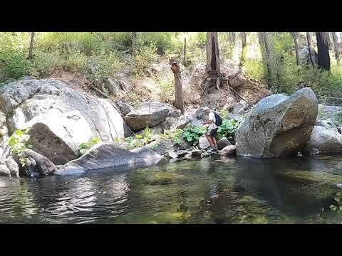 Fly Fishing On The South Fork Tuolumne River (Carlon Falls Trail)