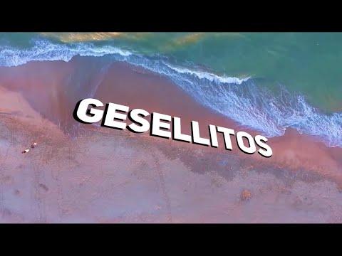 GESELLITOS