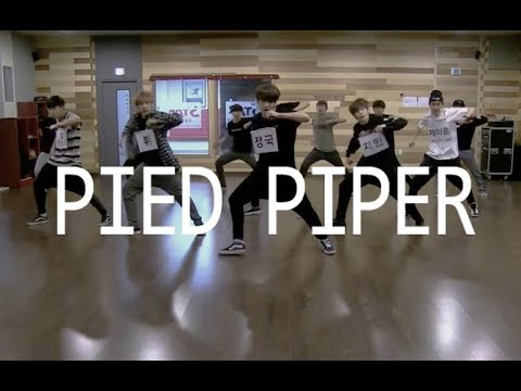 download pied piper bts