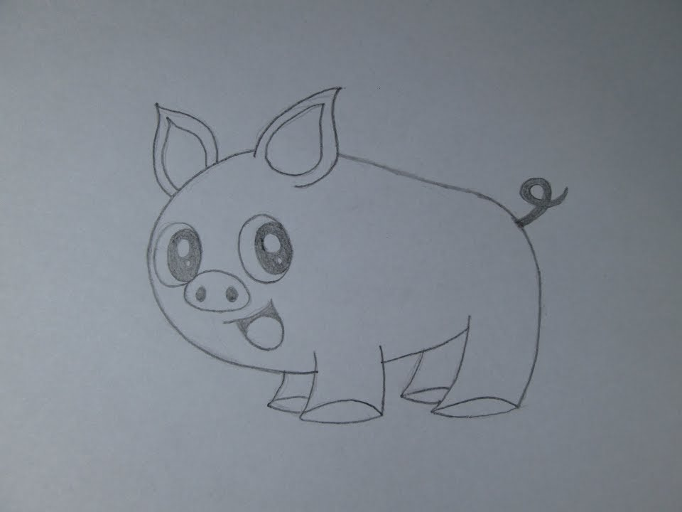 Cmo dibujar un cerdo  YouTube
