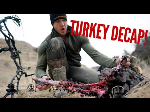 2019 TURKEY DECAP WITH A BOW! WARNING GRAPHIC! | Bowmar Bowhunting |