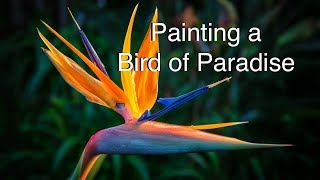 How to paint a bird of paradise flower in watercolor tutorial watercolour