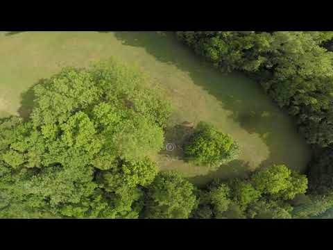 Flying Over The Trees//Fpv Freestyle//CLEAN YOU CAMERA LENS