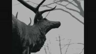 Agalloch - The Hawthorne Passage [1 of 2]