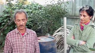 Обрезка молодого саженца яблони. Консультант П.С. Шарков Сайт
