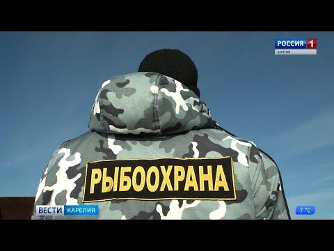 С 2020 года в России введут новые правила любительской рыбной ловли