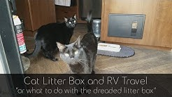 Cat Litter Box and RV Travel