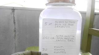 GaNs hormus con agua de mar.GaNs hormus con acqua di mare.1