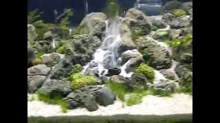 Riam Macam - Aquajaya Main Tank - an underwater waterfall / sand fountain
