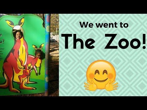 Atlanta Zoo Vlog  Interracial family  Biracial family