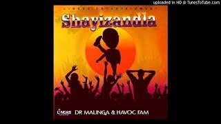 Dr Malinga & Havoc Fam-Shayizandla