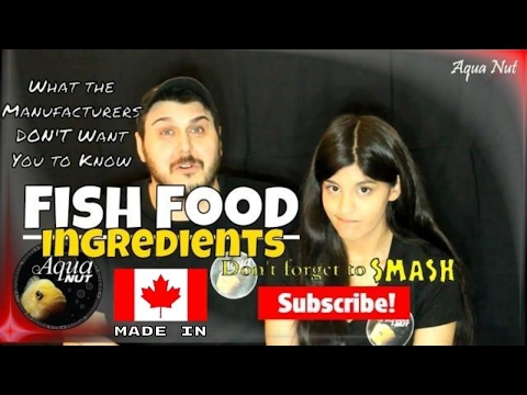 Fish Food Ingredients Fully Explained 🐟 Everything You Need To Know About Fish Feed