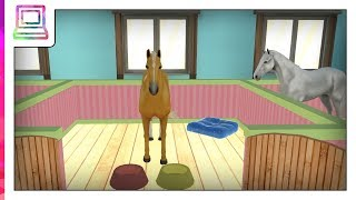 Horse Home Android Gameplay (Horse Game)