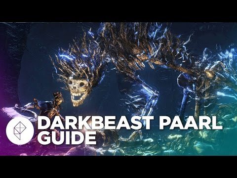 Bloodborne Boss Guide: How to beat Darkbeast Paarl
