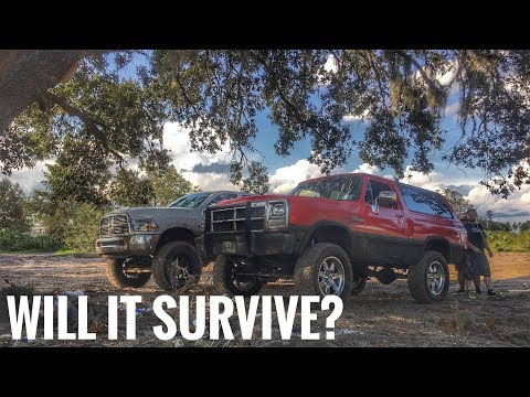 Taking the Cummins Swapped Ramcharger OffRoading!!