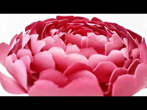 Paper flowers rose peony diy tutorial easy for children origami flower folding 3d for kids,for begin