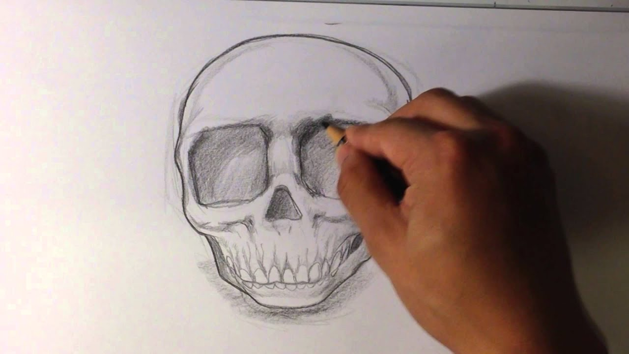 How To Draw A Baby Skull Skull Drawings Youtube