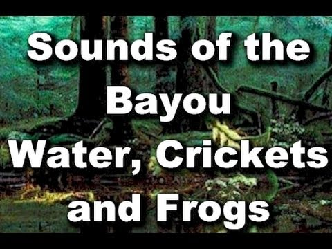Relaxation Sounds : Blue Bayou - Crickets, Frogs and Bugs