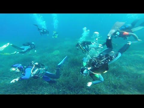 Scuba diving / Plongée sous marine Saint Jean Cap Ferrat France