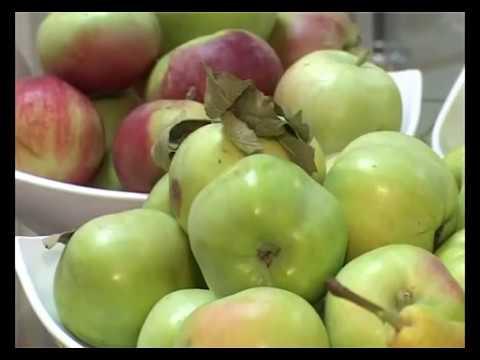 Как выбрать яблоню? Самые вкусные яблоки.