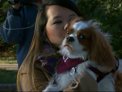 Ebola Survivor Nina Pham Reunites With Her Dog