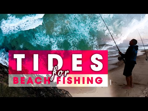 Tides For Beach Fishing - WHICH TIDE IS BEST?