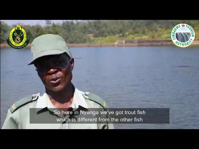 Tourism Talk Thursdays: Fishing