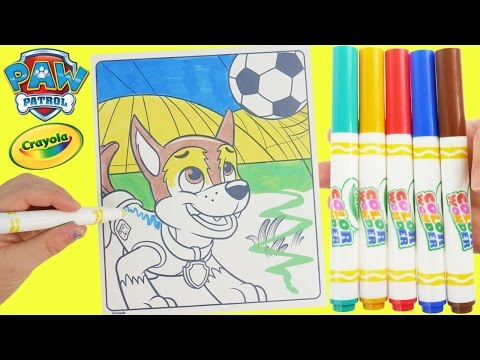 Full Download Paw Patrol Zuma Drawing And Coloring How