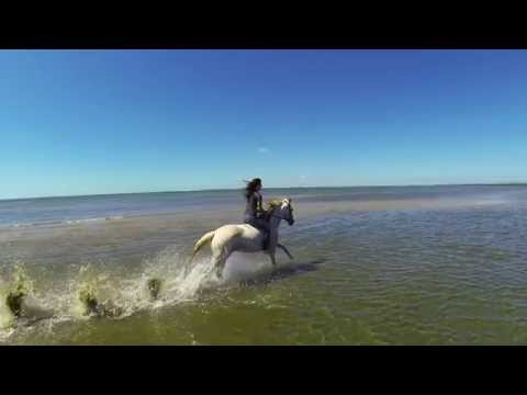 Awesome Beach Horse Riding filmed with Drone (Quadcopter)