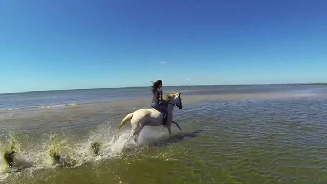 awesome beach horse riding filmed with drone (quadcopter) - youtube