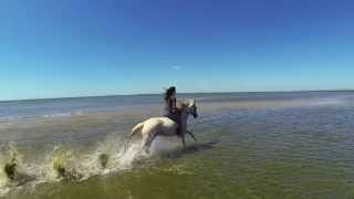Awesome Beach Horse Ride filmed with FPV Quadcopter