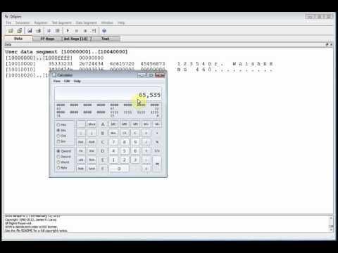 EENG 460: MIPS #4: Data Segment ASCII