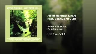 An Mhaighdean Mhara (feat. Seamus McGuire)