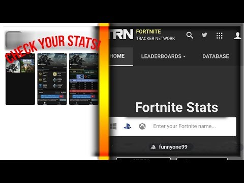 How To Find Fortnite Stats