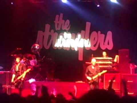 Stranglers Threatened/Something better change live