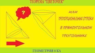 Пропорциональные отрезки в прямоугольном треугольнике, или теорема цветочек, геометрия 8 кл.
